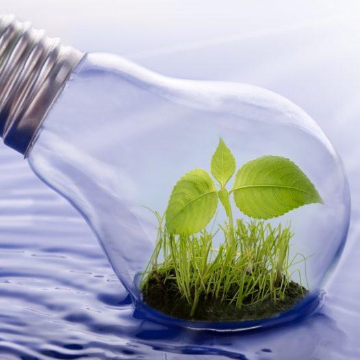"AGEP Winter-School ""The Nexus of Water, Energy, Soil and Food"""