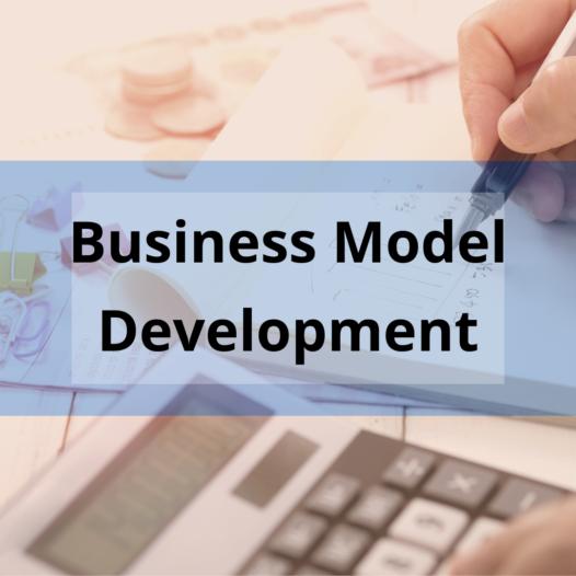 Business Model Development for International Students