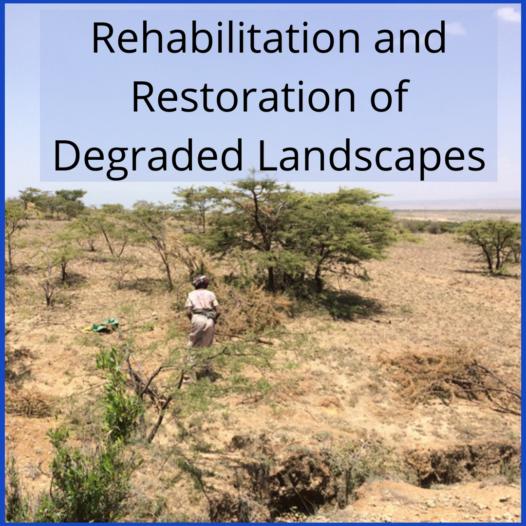 Rehabilitation and Restoration of Degraded Landscapes